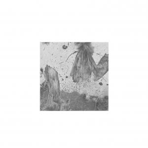 Johanna Love, Der Fliessenden Welt, Inkjet. Paper size 300x300mm. £200. Edition of 36
